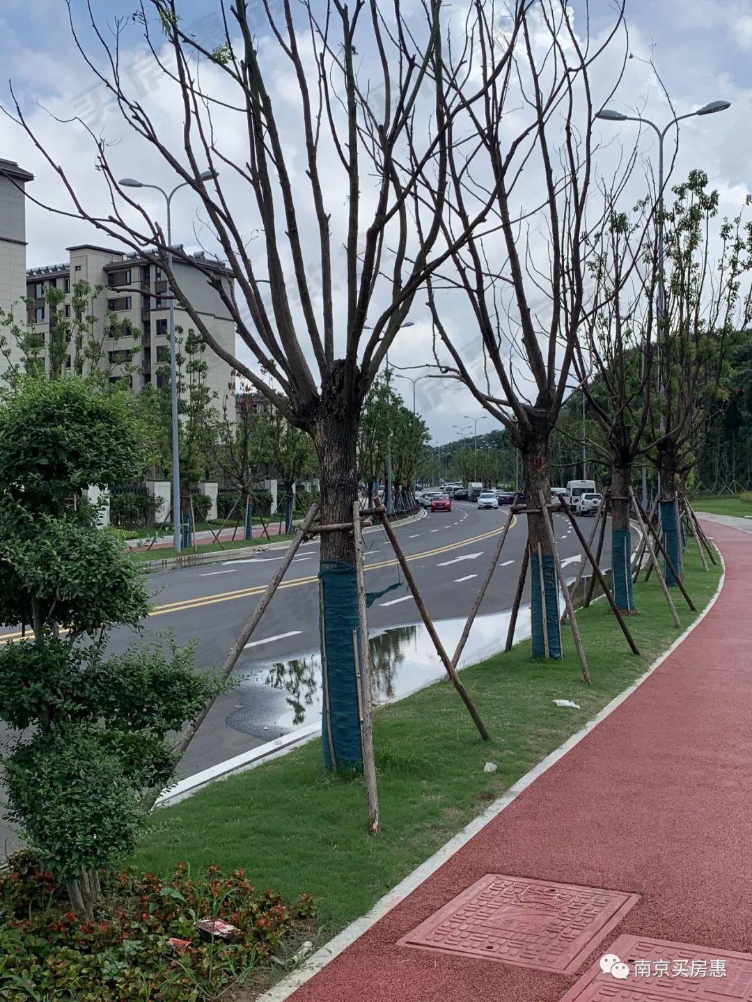 nj.ihouse.ifeng.com