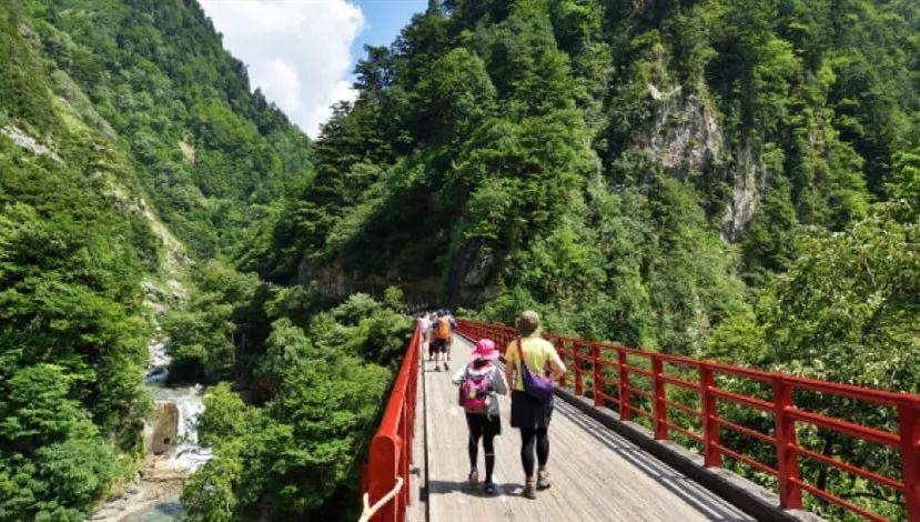 乘坐火车赏红叶 探访日本三大溪谷之一的