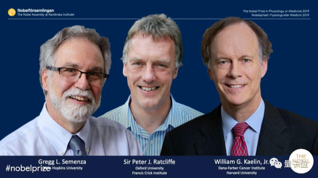 率先 2019诺贝尔生理学\医学奖率先颁出!英美3学者加冕,揭秘血与氧关系,抗击肿瘤和癌症