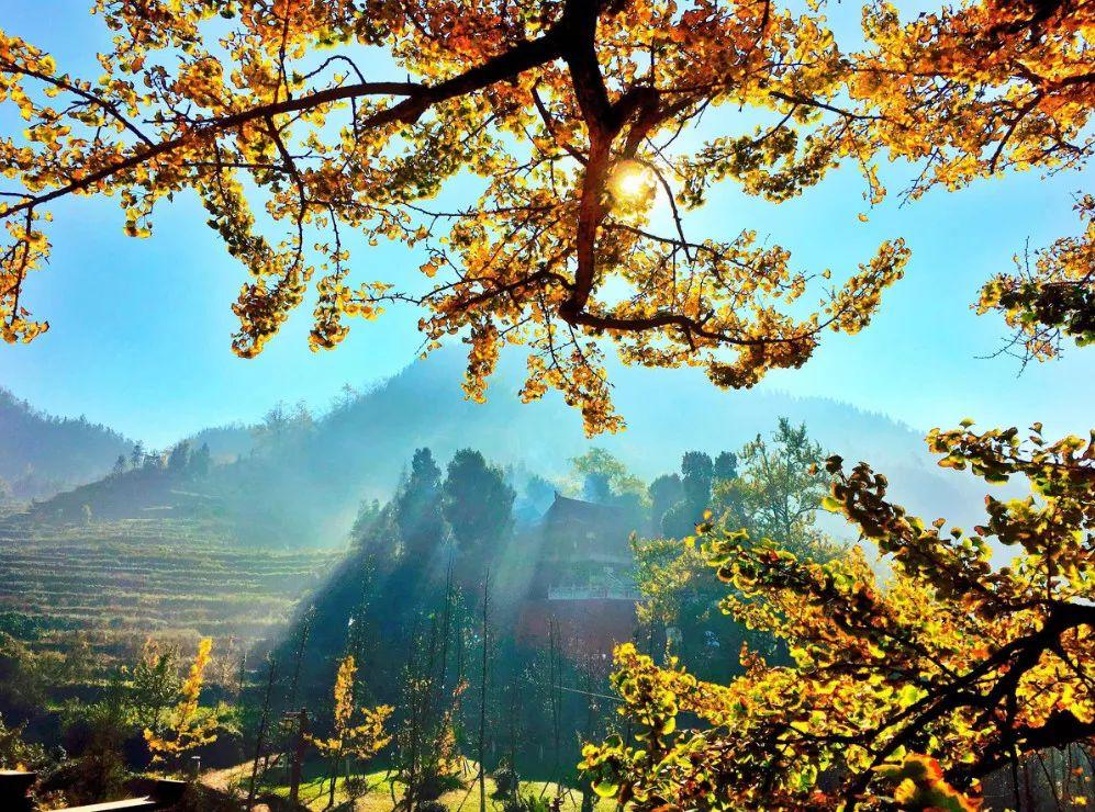 10月底,贵州这些山野妙境开始美起来,
