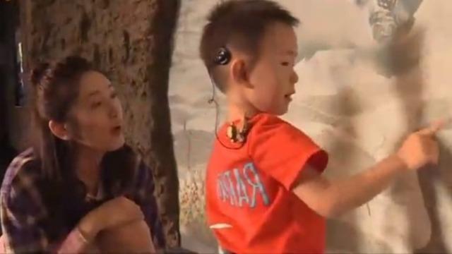 一号华姐带小朋友逛海洋馆直言:他比较淘气爱动
