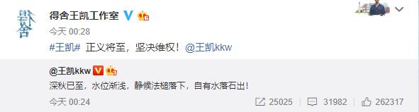 王凯深夜发文回应网络谣言:静候法槌落下