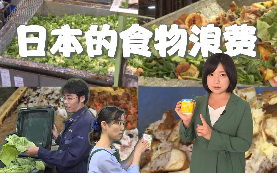 如此珍惜资源的日本,竟是世界上最浪费粮食的国家?