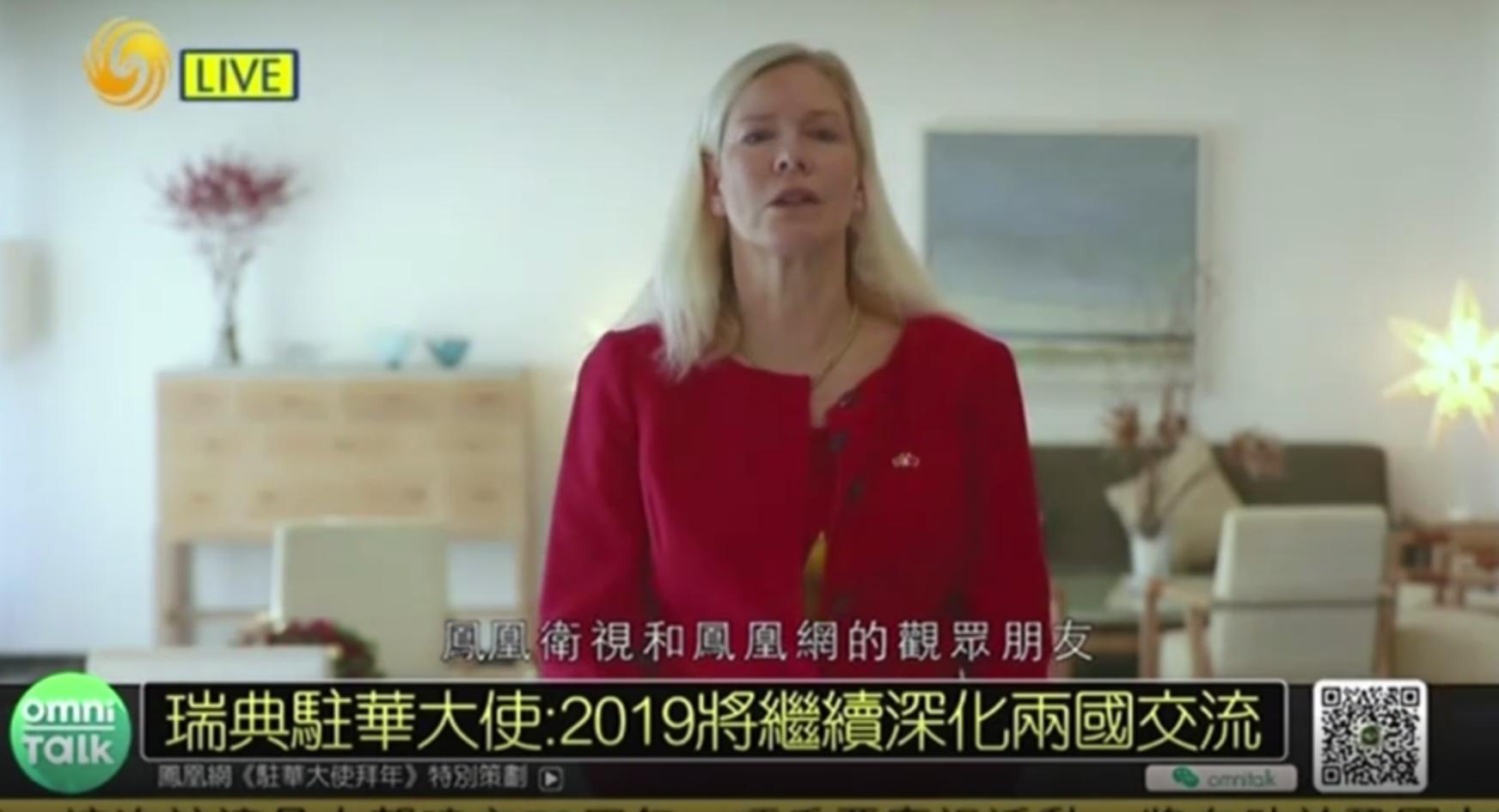 瑞典驻华大使:2019将继续深化两国交流