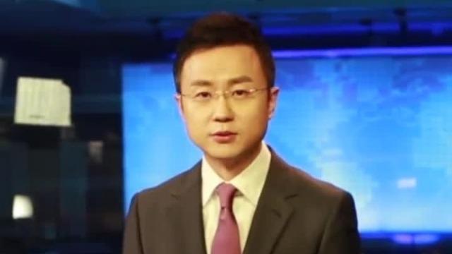 警方公布郑文杰嫖娼审讯视频 央视主播:他脸在哪里呢?