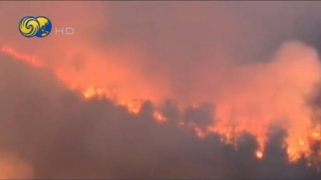 广东广西多地放生森林大火 3000多救援人员进行紧急扑灭