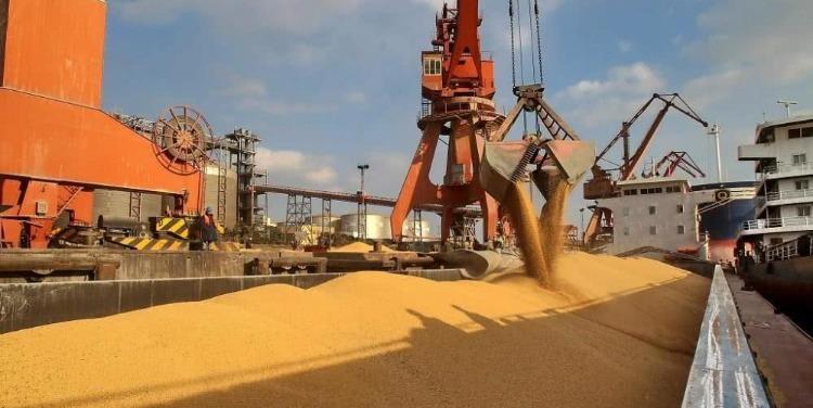 中国自美进口农产品增加是否会冲击国内产业?官方回应
