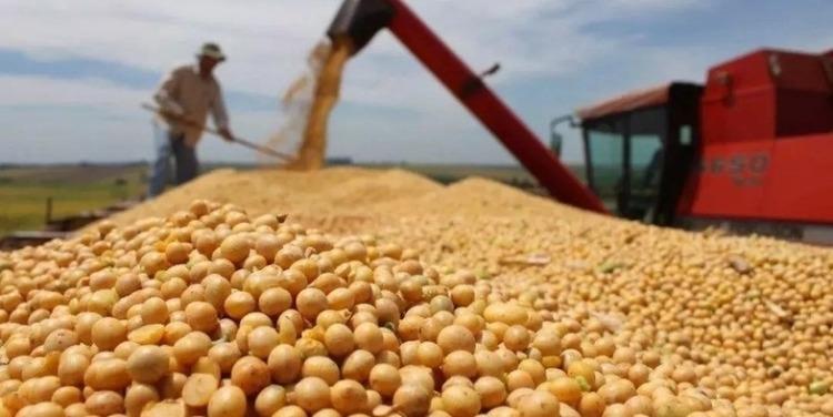 除了农产品中国还会扩大哪些美国产品进口规模?中方回应