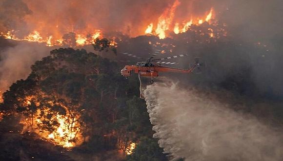 損失慘重澳總理提高級專項調查,是什么在助燃山火?