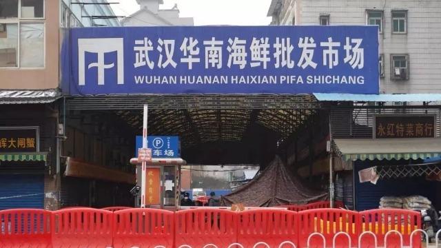 病毒的源头?武汉曾有多家餐厅售卖野味