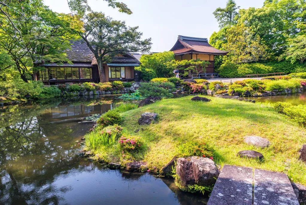 """疫情之下的境外旅游,""""失宠""""的何止日本奈良公园的鹿"""