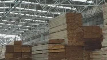 园林木业城整合中小企业 正在推动林业国际化进程