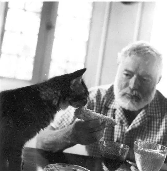 海明威与猫