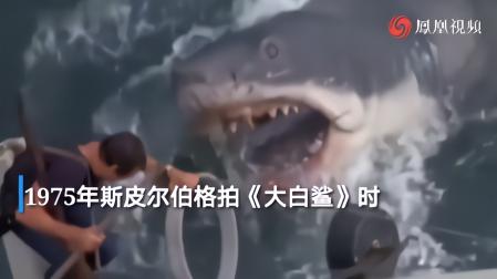 《大白鲨》女演员因新冠去世,享年91岁