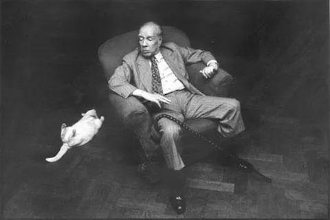 博尔赫斯与猫