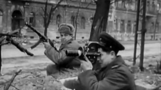 1942年德军进攻斯大林格勒 苏军的表现分散了对大屠杀的关注