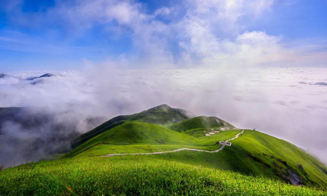 全球最大高山草甸,不在内蒙古,也不在新疆,夏季最高温度仅23℃!
