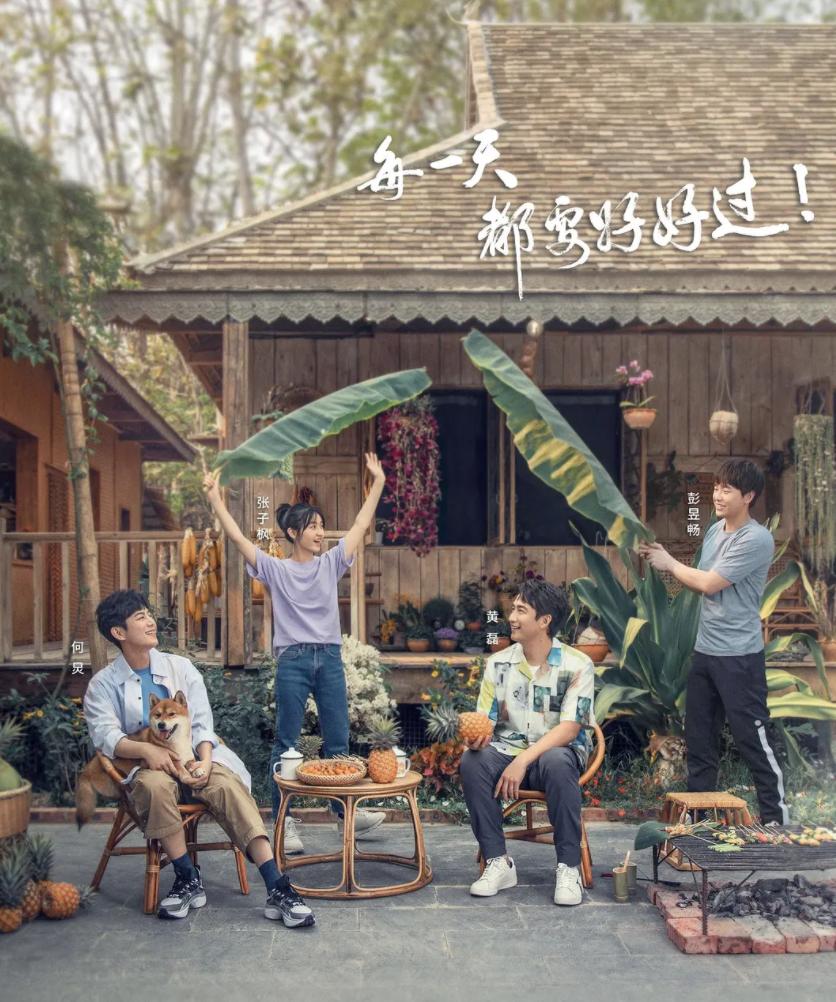 Feng向标5月剧综榜:《向往4》口碑最好,《幸福触手可及》评价两极