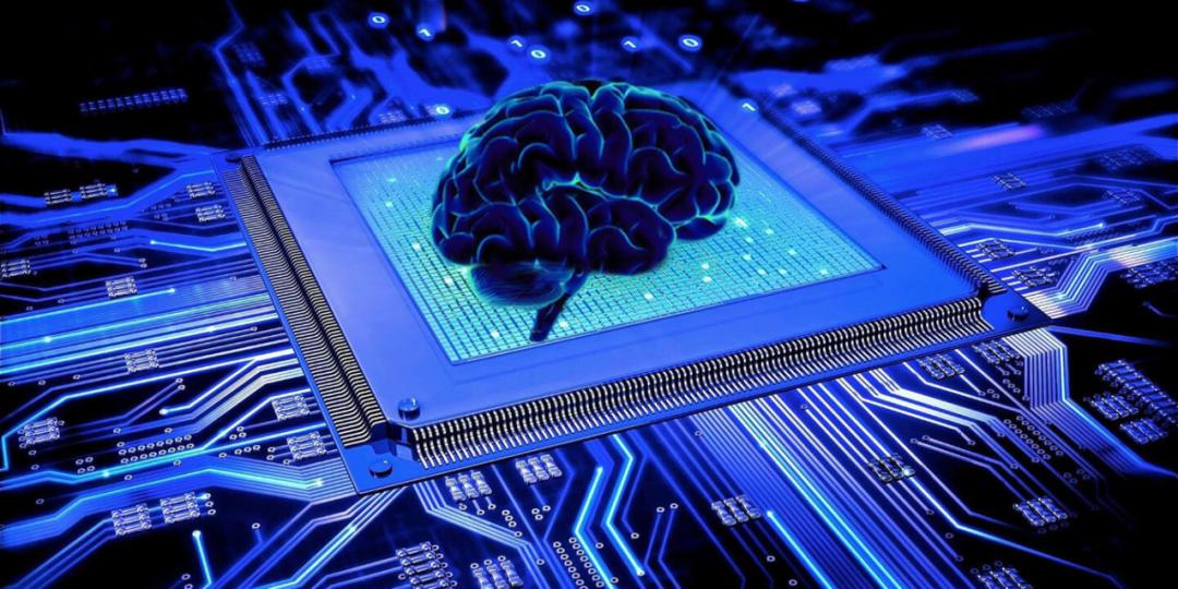 东北a股苏定邦讲武堂:大脑是一台超级计算机吗?
