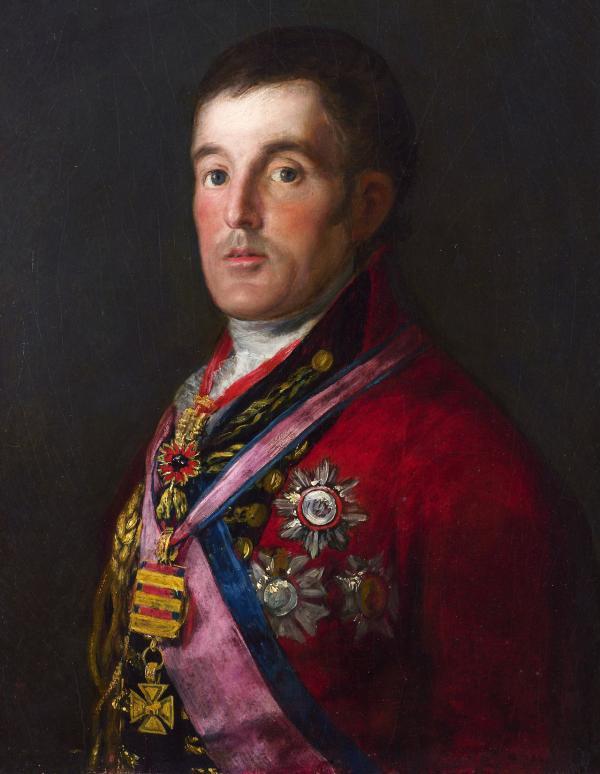 《威灵顿公爵》,戈雅