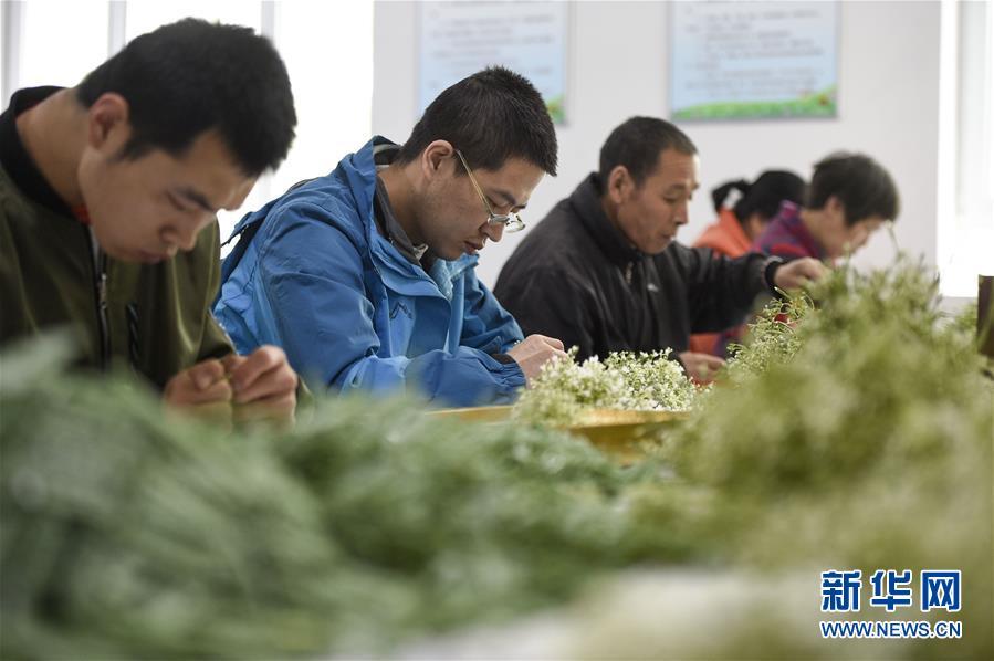 (在习近平新时代中国特色社会主义思想指引下——新时代新作为新篇章·习近平总书记关切事·图文互动)(5)六盘山下的誓言——来自宁夏的脱贫故事