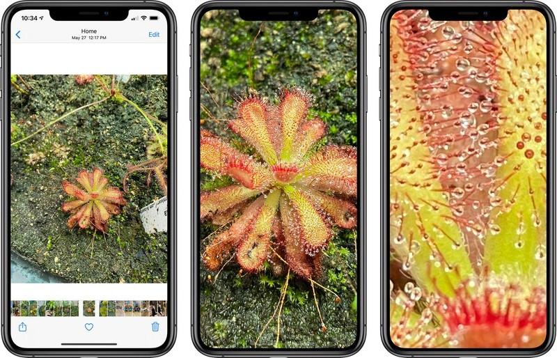 iOS 14 用户将可进一步放大照片