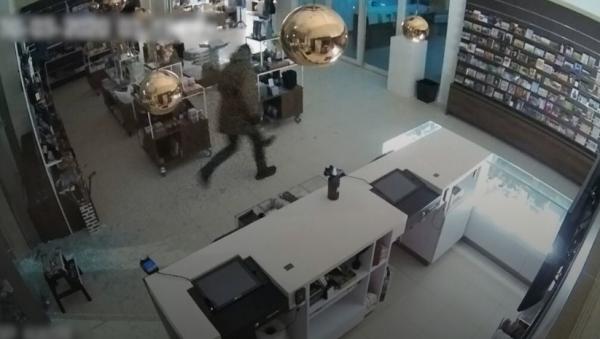 《春天花园》遭盗窃的监控录像