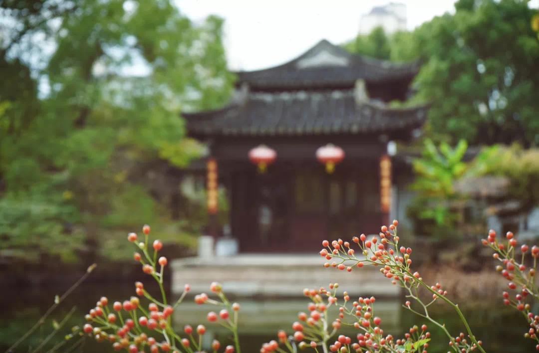 总之从现在开始,摩登都市到苏中小城,上海小笼包到蟹黄汤包,都可以随心穿梭了!
