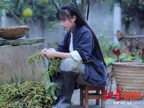 """【张岩免费夫妻大片在线看】_越南博主模仿李子柒?各国的""""李子柒""""很相似"""