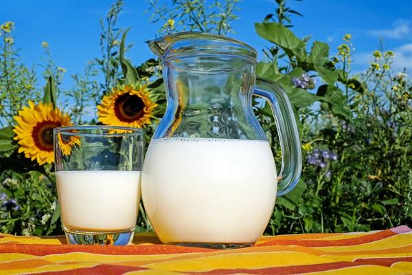 千万别喝!研究发现生牛奶含有大量抗生素抗性基因