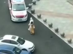 北京石景山万达现一例疑似新冠患者 工作人员现场消杀