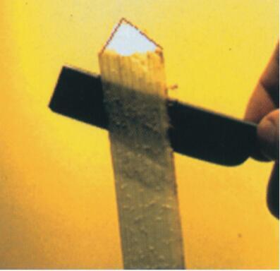 从新鲜的纸莎草茎秆上削下薄片。