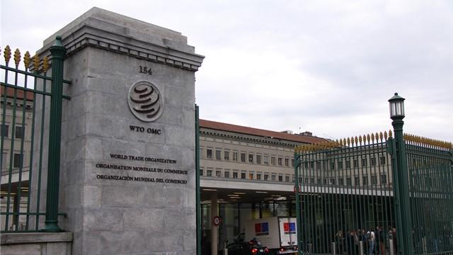 """当下,各成员方向WTO提名新总干事的""""赛程""""已接近尾声。"""
