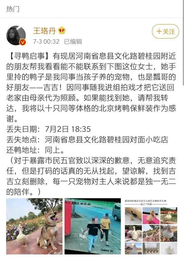 【百度恶意点击软件】_王珞丹寻找的宠物鸭被宰杀 抓鸭算犯罪吗?