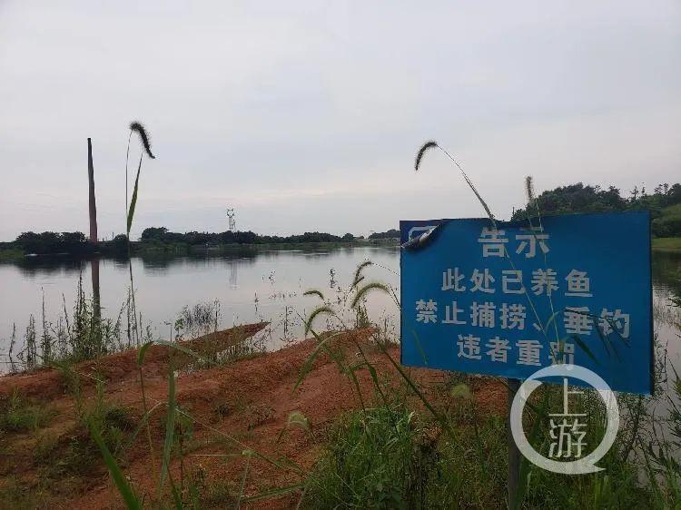 1993年10月,两名遇害男童被发现浮尸的下马塘水库。/记者 肖鹏