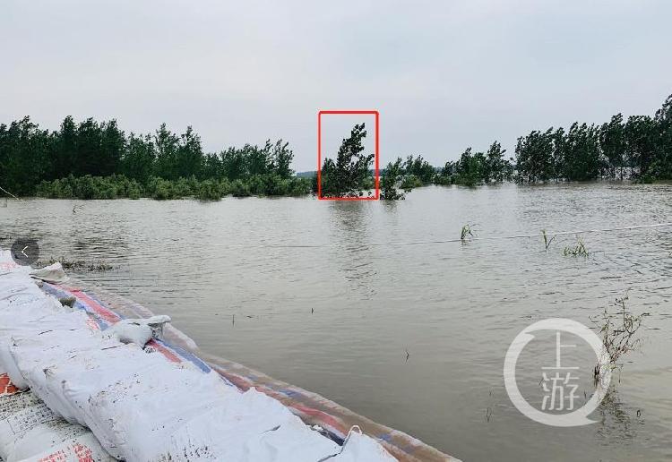 【彩乐园代理33876】_九江告急!每天涨水近半米 3000多人主动返乡抗洪