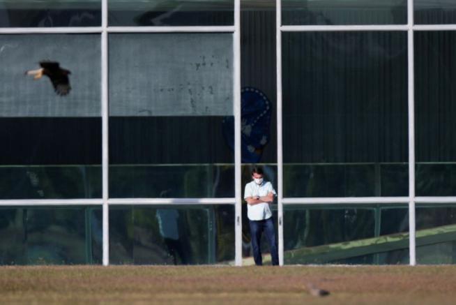 【出柜是啥意思】_巴西总统博索纳罗确诊一周后进行第二次新冠病毒检测 结果仍为阳性
