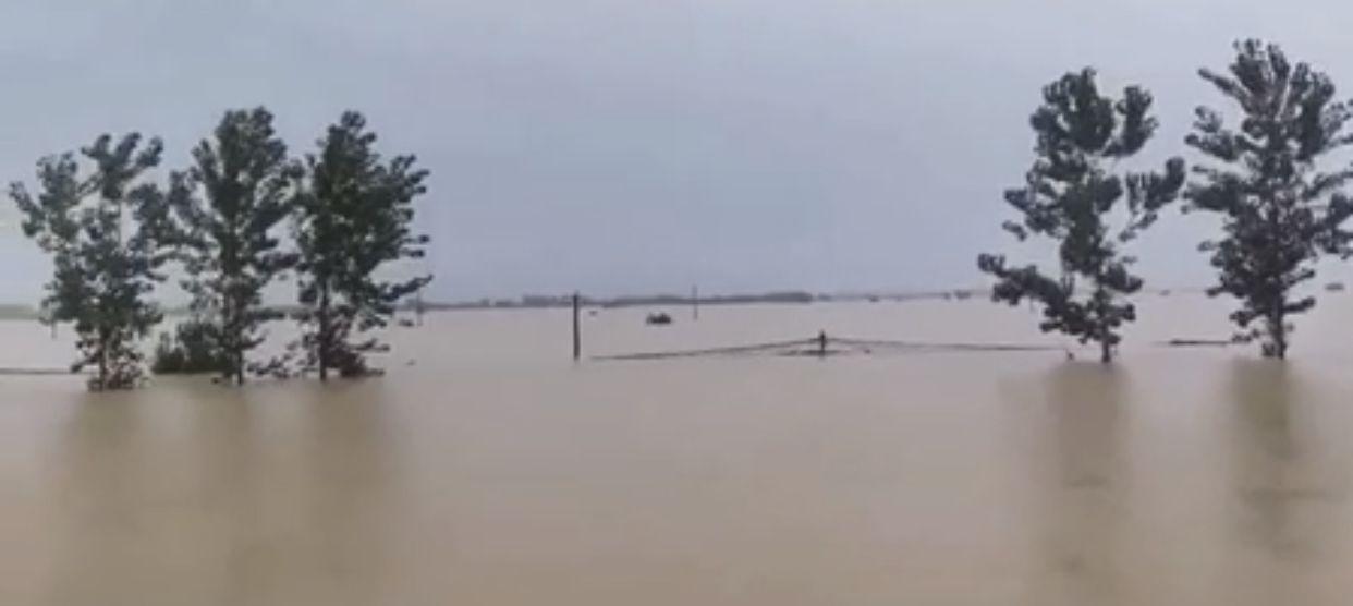 【迪士尼彩乐邀请码】_鄱阳县莲湖乡孤岛救援:洪峰来临时水位1小时升1米