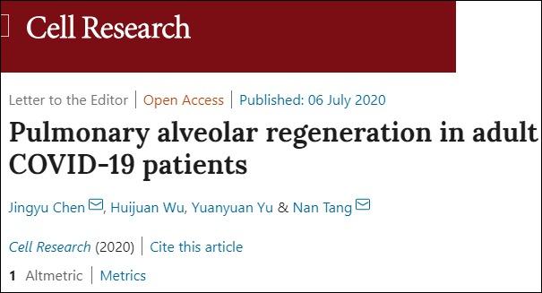 【优化技术】_中国学者发现新冠肺炎患者肺泡可以再生