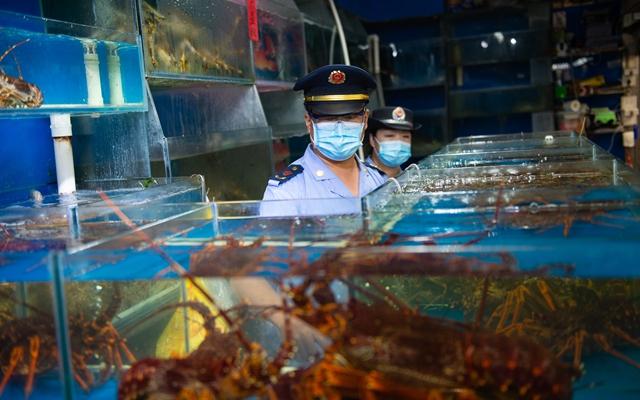 6月16日,丰台区市场监督管理局工作人员在岳各庄批发市场海鲜交易厅内开展检查工作。新华社
