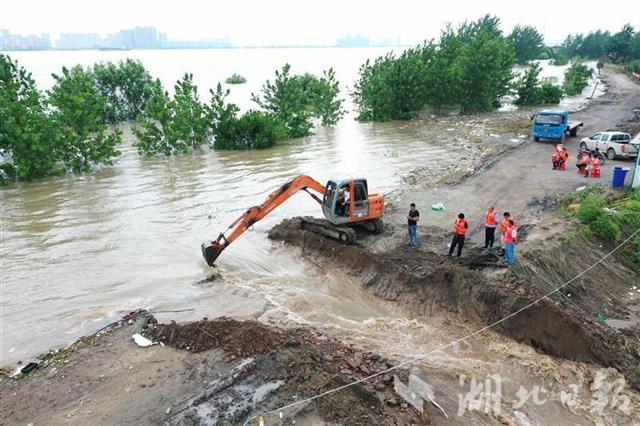 湖北黄梅县小池镇滨江圩被挖开为长江泄洪