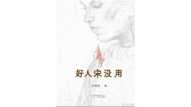 《好人宋没用》,作者:任晓雯,版本:北京十月文艺出版社 2017年8月