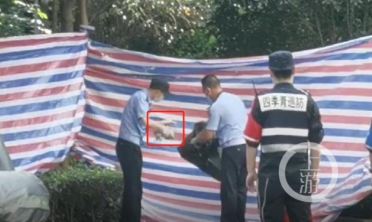 【网站自然优化】_杭州女子失踪案:警方查看6000小时监控视频连夜审讯突破口供