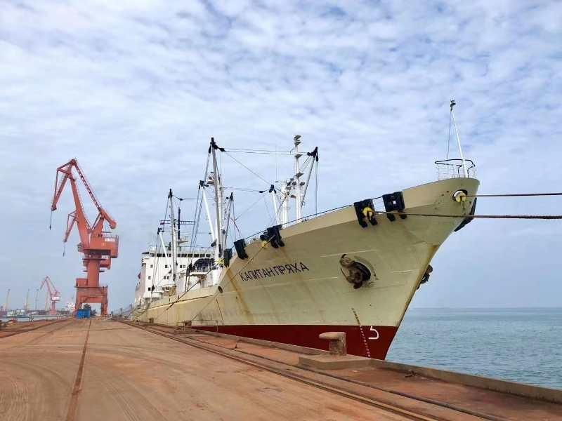 董家口港口岸正式开放后第1条冻鱼船靠泊