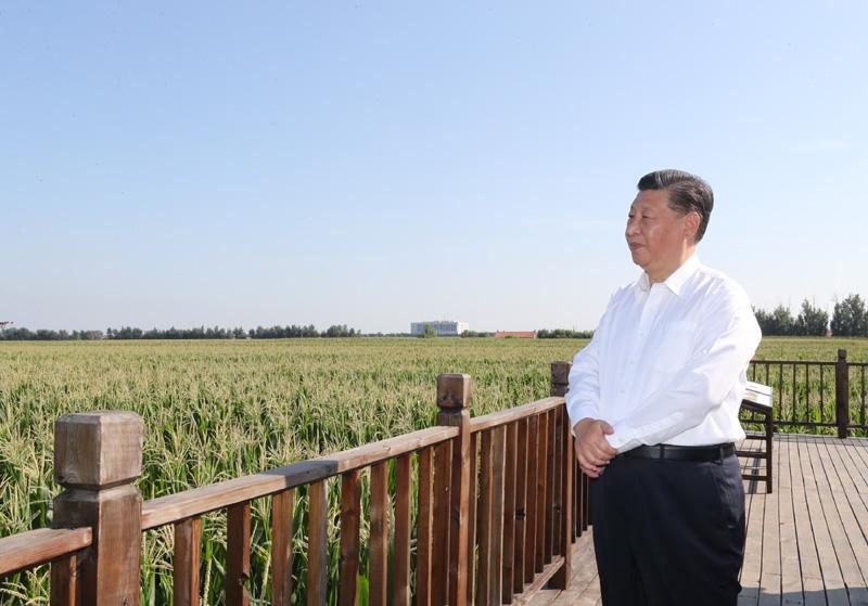 央视网记者:习近平:推动吉林全面振兴全方位振兴