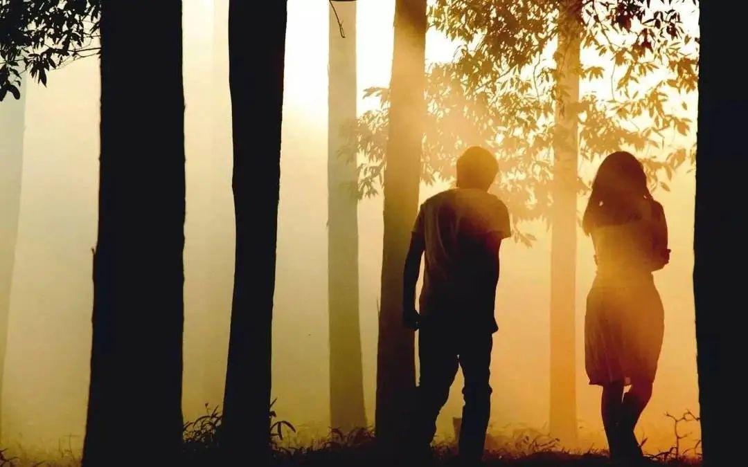 电影《挪威的森林》
