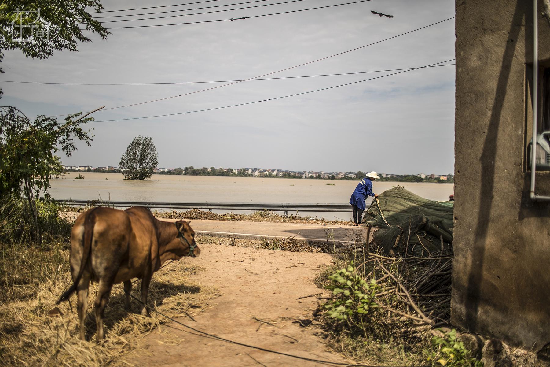 在人间 | 69岁经历4次大洪水,有3次房子都被淹
