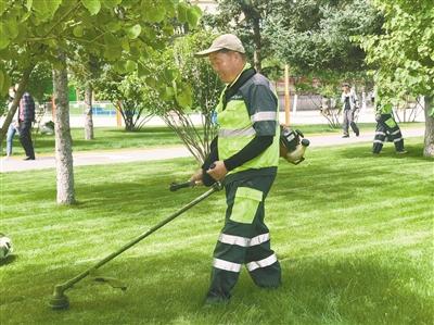 修剪草坪。 本报记者 杨燕玲 摄