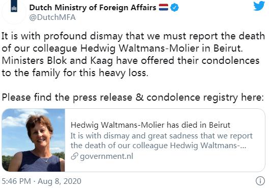 【百度网页快照】_荷兰驻黎巴嫩大使夫人因贝鲁特港口爆炸身亡