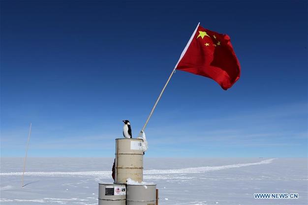 """""""企鹅""""登陆冰穹 A -源自中国第35次南极科考任务 (图片来源 :新华社)"""